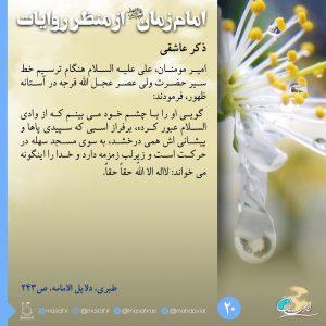 امام زمان از منظر روایات 20