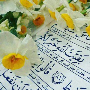 حضرت مهدی عجل الله در قرآن